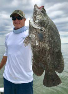 flounder, speckled trout, tarpon, shark, triple tail, redfish, fishing charters, cape san blas, port st joe, st joe bay, indian pass, mexico beach